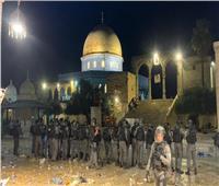 فلسطين تطالب أعضاء البرلمان اليوناني بتوفير الحماية الدولية للشعب الفلسطيني
