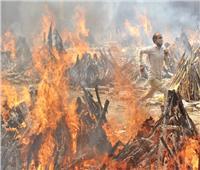 «الصحة العالمية» تجيز «سينوفارم» وتدعو دولاً للاعتراف بـ«واقعها الوحشى»