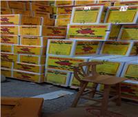 حملة مكبرة على مصانع ومخازن المواد الغذائية بغرب الإسكندرية