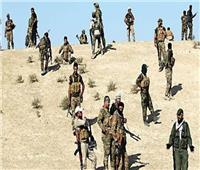 إحباط محاولة تسلل للدواعش في جرف النصر العراقي