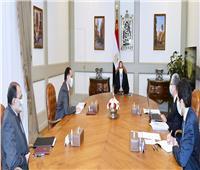 الرئيس السيسي يتابع مع «مدبولي» المشروعات القومية لوزارة الكهرباء