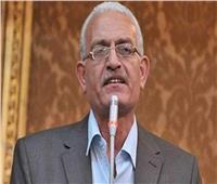 برلماني مصري يدعو مجلس الأمن لتوفير الحماية الدولية للشعب الفلسطيني