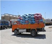 شون وصوامع المنيا تستقبل 110 ألف طن من الأقماح
