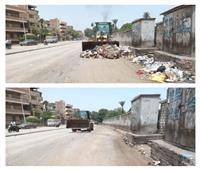 حملة نظافة موسعة في أوسيم بالجيزة | صور