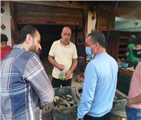 الهواري يتابع «حلقة السمك» بأسواق العريش