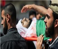 ارتفاع عدد شهداء العدوان الإسرائيلي على غزة إلى 29 شخصًا