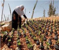 حكايات| رداً على إسرائيل.. أم الشهداء تزرع في القنابل «وروداً»