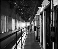 3 ألمان يترجون ضابطا مصريا لإيداعهم السجن.. فما السر؟