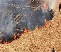 النيران تلتهم 3 منازل وحوش دون خسائر في الأرواح بقنا