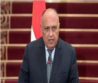 شكري: مصر لا ترى حلًا للسلام في المنطقة سوى بنيل الشعب الفلسطيني حقوقه