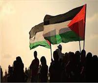 الجماعة الإرهابية تتاجر بدماء الفلسطينيين على منصات التواصل الاجتماعي