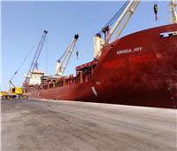 31 سفينة إجمالى الحركة الملاحية بموانئ بورسعيد