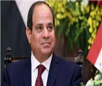 الرئيس السيسي: الإرادة السياسية تحقق التنمية المنشودة لدول حوض النيل