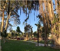 - وزارة الرى تواصل تطوير الحدائق التابعة لها بالقناطر الخيرية