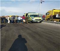 حادث مروع على الطريق الزراعي بالقليوبية.. ومصرع فتاة