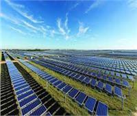 «الزعفرانة وبنبان وكوم امبو».. أبرز مشروعات الطاقة الشمسية في مصر