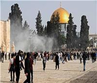 إعلامية فلسطينية: الاعتداءات الإسرائيلية قتلت عائلات بالكامل