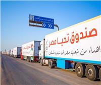 مصر تقدم 130 شاحنة محملة بمساعدات للأشقاء الفلسطينيين في قطاع غزة