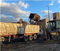 رفع ٧٠٠ طن قمامة وإزالة الأتربة وتسهيل الحركة المرورية بكفر الدوار