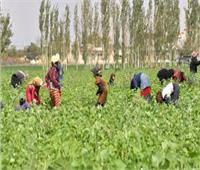 10 ملايين دولار من البنك الدولي للمزارعين اللبنانيين