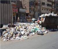 بعد التعاقد مع شركات خاصة للنظافة.. كيف تقدم شكوى في حالة انتشار القمامة؟