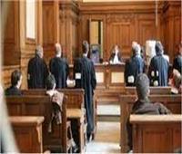 ننشر تفاصيل الحكم على 11 متهمًا بقضية «فساد القمح الكبرى»