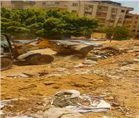 «النظافة والتجميل» بالجيزة تستجيب لشكوى مواطن في حدائق الأهرام| صور