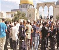 مجلس حقوق الإنسان يطالب بتحقيق دولى فى الانتهاكات ضد الفلسطينيين