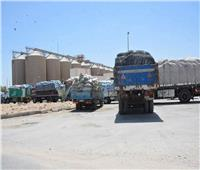 «المنيا الجديدة» تستقبل القمح من المزارعين بعد امتلاء صومعة نفرتيتي