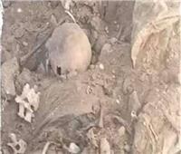 استولى على مقابر الصدقة وألقى جماجم في الطريق.. تفاصيل ضبط مقاول القليوبية