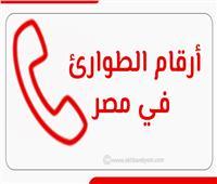 إنفوجراف| أرقام الطوارئ في مصر