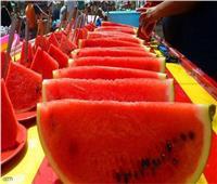 بعد انتشار شائعات تسببها في مشاكل صحية | فاكهة الصيف.. أمان ومناعة