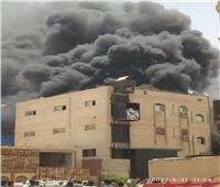 حريق هائل يلتهم مصنعا بالعاشر من رمضان   صور