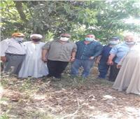 الزراعة تستجيب لشكاوي مزارعي المانجو بالإسماعيلية.. وتشكل لجنة