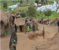 مصر تدين الهجماتالمسلحة على قريتي بوجا وتشابي شرق جمهورية الكونغو الديمقراطية