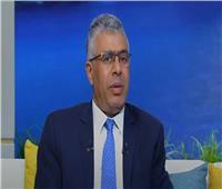 «برلماني» يوضح دور مصر في تثبيت التهدئة وإعادة إعمار غزة | فيديو