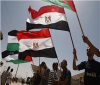 لجنة القوى الوطنية بغزة تؤكد أهمية رعاية مصر لـ«المصالحة الفلسطينية»
