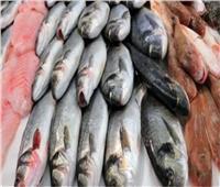 أسعار الأسماك في سوق العبور.. اليوم 4 يونيو