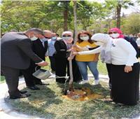 محافظ القاهرة وشباب البرنامج الرئاسي يغرسان شجرة احتفالا بيوم البيئة العالمي