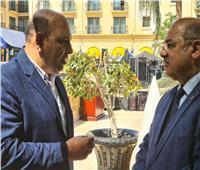 «رئيس الأفريقي للكونغ فو» يبحث مع هشام حطب سبل تعزيز التعاون المشترك
