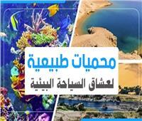 إنفوجراف | 10 محميات طبيعية لعشاق السياحة البيئية