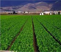 «بحوث الصحراء» يستعرض تفاصيل توقيع بروتوكول تعاون مع «الريف المصري» | فيديو