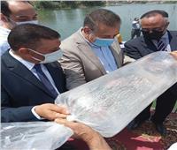 «الزراعة»: إلقاء 2 مليون وحدة زريعة بلطي نيلي بالبحر الفرعوني في المنوفية
