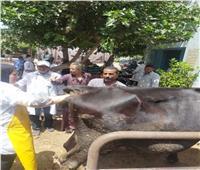 «الزراعة»: علاج أكثر من ٨٥ ألف رأس ماشية في قوافل بيطرية مجانية.. خلال 5 أشهر