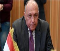 مصر تبلغ مجلس الأمن اعتراضها على الملء الثاني لـ«سد النهضة»