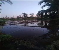 أمن المنيا ينجح في إنقاذ مئات الأفدنة من الغرق في قرية ديروط بملوي | صور