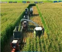 300 مليار جنيه تكلفة أضخم مشروع استصلاح زراعي