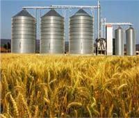 «التموين» 4.5 مليارات جنيه قيمة الهدر في القمح قبل تدشين 35 صومعة
