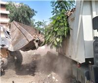 رفع تراكمات القمامة والمتابعة اليومية لأعمال النظافة بقرى المنوفية | صور