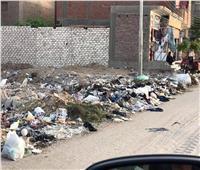 أكوام القمامة تغزوا شوارع قري «حياة كريمة» بمركز الغنايم  | صور
